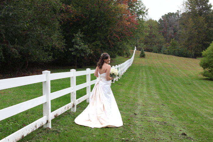 Back of Bride's Gown